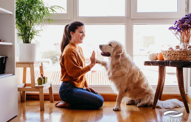 COMO ESCOLHER UM ANIMAL DE ESTIMAÇÃO PARA O SEU APARTAMENTO | UNA pensando sempre no seu PET